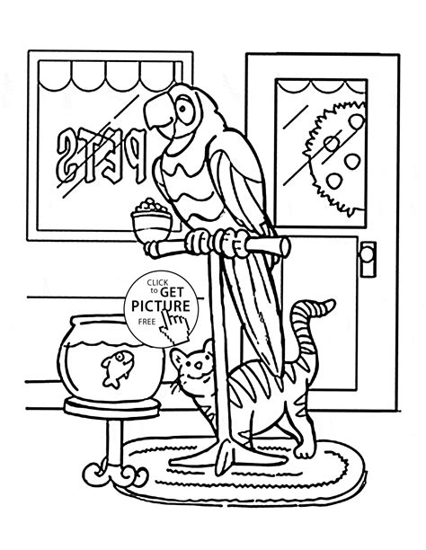 coloring pages of pets printable parrot and cat pets coloring page for kids animal