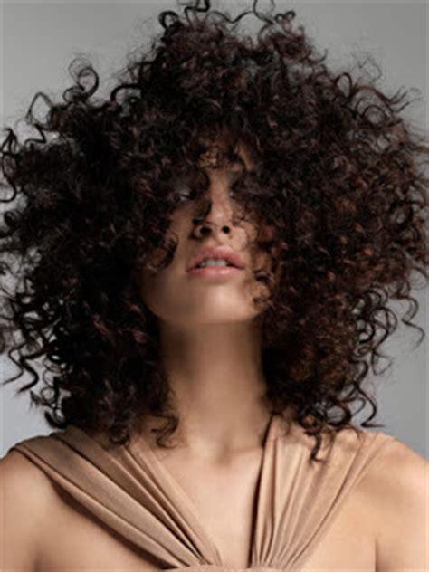 zig zag curl pattern natural fractal curls last hair models hair styles
