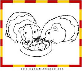 guinea pig coloring pages coloring pages printable for guinea pig coloring