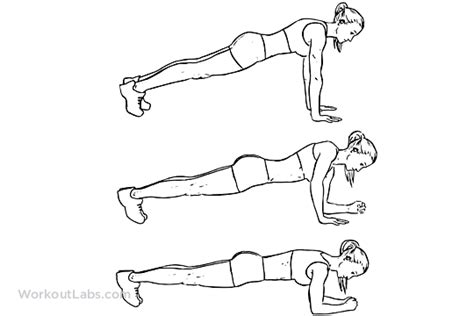 plank exercise diagram plank variations