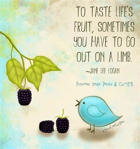 fruit quotes 17 best images about quotes we on