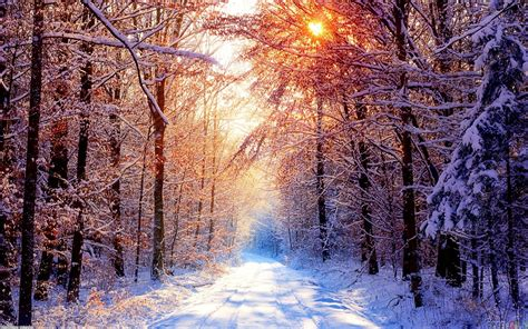 beautiful winter beautiful winter wallpaper 345709