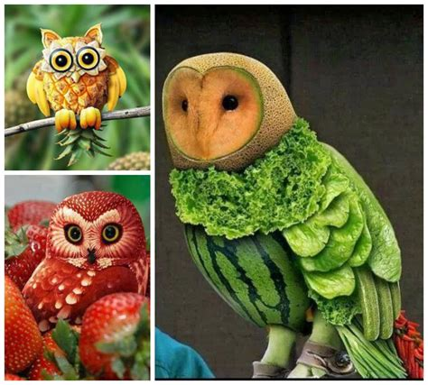 awesome food art owl theme food art