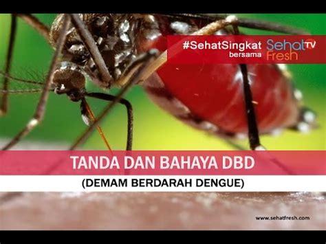 Stop Demam Berdarah Dengue gejala dan tanda bahaya dbd demam berdarah dengue
