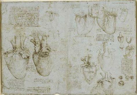 vasi coronarici leonardo da vinci anatomista alla corte della
