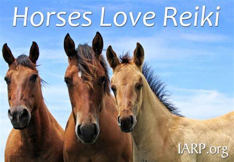reiki  horses  equine reiki works   benefits