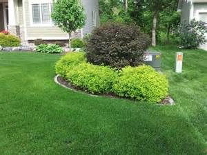 beautiful foundation plantings utilizing spirea hosta barberry burning bush and ninebarks