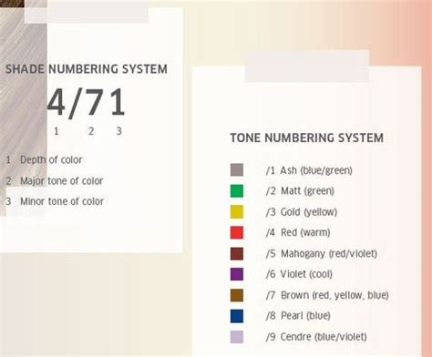 how does schwarzkopf color system work 30 best images about wella gt gt color touch on pinterest