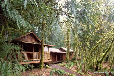 Cabins Oregon by Mt Cabin Cabins For Rent In