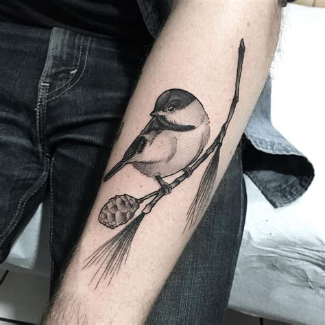 chickadee tattoo best 25 chickadee ideas on watercolor