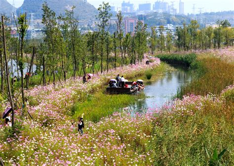 turenscape transforms a ditch into wetland park in china china landscaping and landscape