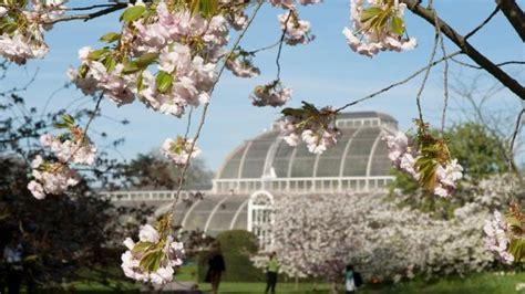 Royal Botanic Gardens Kew Garden Visitlondon Com The Royal Botanic Gardens Kew