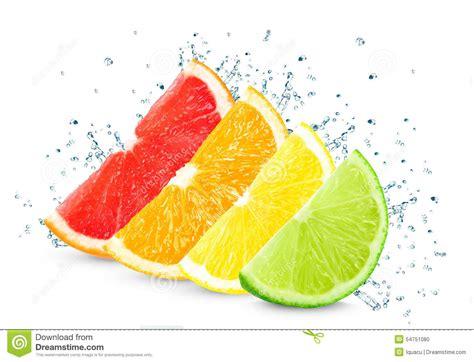 Citrus Splash citrus splash stock photo image 54751080