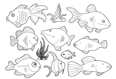 pictures to colour fish