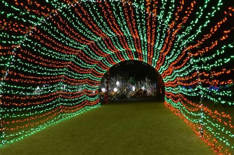 wild lights palm desert the 10 best christmas light displays in southern