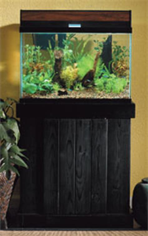 Lavender 20 Ml Tester Sle Pack Cat Ungu Pastel Spt Manic Panic how to set up a planted aquarium