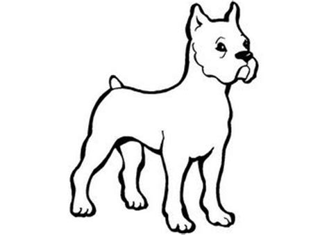 imagenes de animales para colorear los mejores dibujos dibujos para colorear y pintar gratis