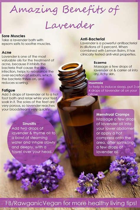 lavender essential oil basics aromaterapi pinterest lavender essential oils it is and