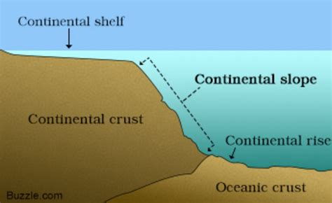 Continental Shelf Slope And Rise by Features By And Canon