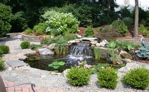 Pictures Of Ponds In Backyards by Backyard Waterfall Pond With Rocks And Shrubs Outdoor