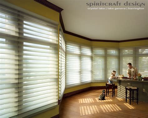 blinds that allow light in energy efficient window shades by douglas in