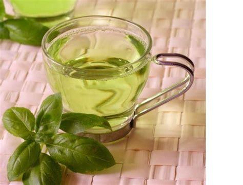 Kapsul Teh Hijau artikel gizi dan kesehatan aneka manfaat teh hijau untuk