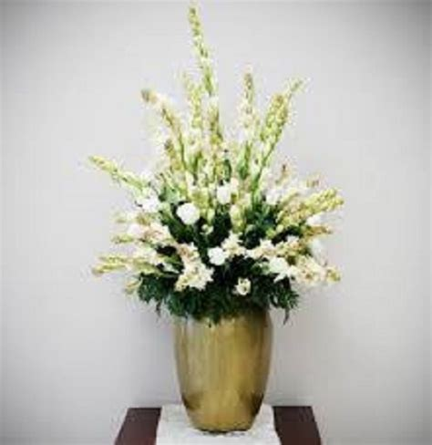 Biji Bunga Sedap Malam 8 cara menanam bunga sedap malam dalam pot ilmubudidaya