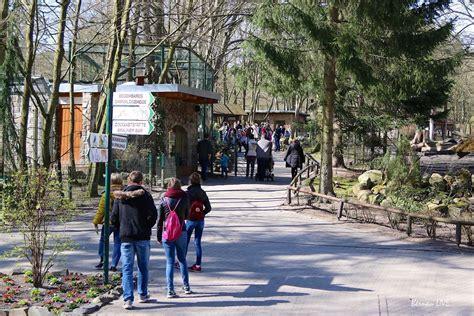 Zoologischer Garten Feuerwehreinsatz by Barnim Ostermontag Im Zoo Eberswalde Bernau Live
