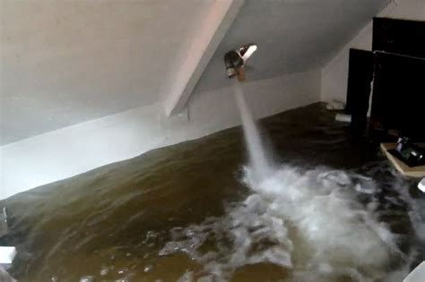 Bathroom Flooded Into Carpet Bathroom Flooded Into Carpet 28 Images Bathroom Floor