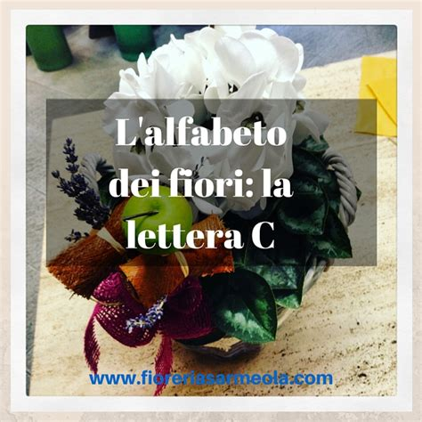 alfabeto dei fiori l alfabeto dei fiori la lettera c