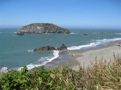 tide brookings oregon harris beach state park brookings all you need to know