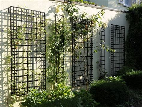 garden metal wall best 25 wall trellis ideas on climbing plant
