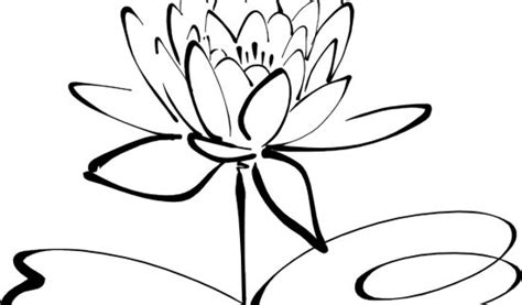 flowers clipart black and white clipart black and white flowers clipart best