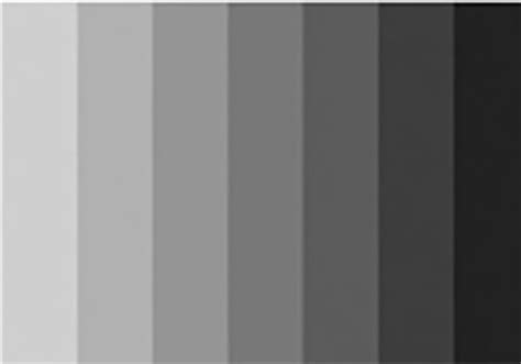 black grey white color scheme black charcoal gray color palette