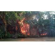 Incendio En El Norte De Choc&243 Amenaza La Selva