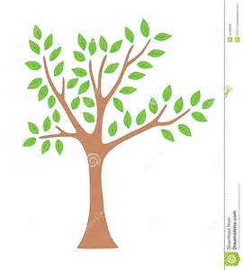 tree with tree with leaves royalty free stock photos image