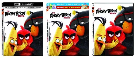 the angry birds movie dvd release date august 16 2016 angry birds alight on dvd blu ray aug 16 onvideo
