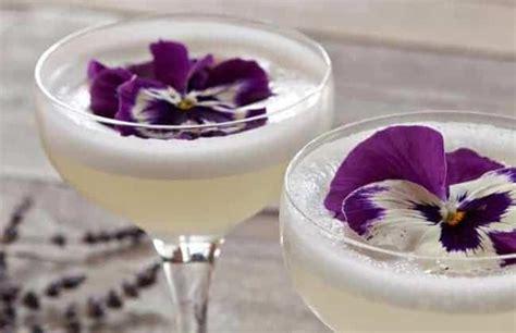 Benih Bibit Bunga Pansy Mix 11 daftar edible flowers bunga yang bisa dimakan bibit