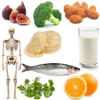 alimentos que contengan mucho calcio alimentos del plato del buen comer que ayudan a fortalecer
