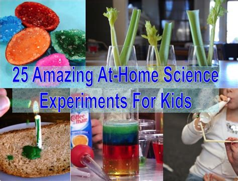 amazing arts and crafts science projects