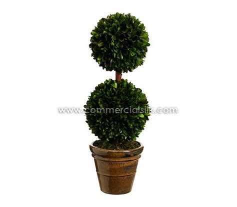 preserved boxwood topiary trees 17 best images about artificial boxwood balls single