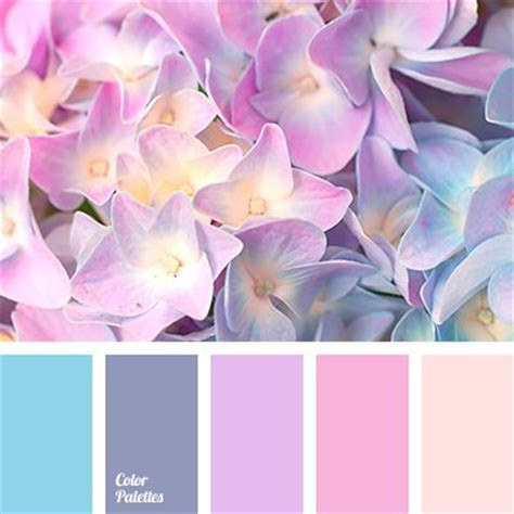colours that go well with light pink best 25 pink color schemes ideas on pinterest spring