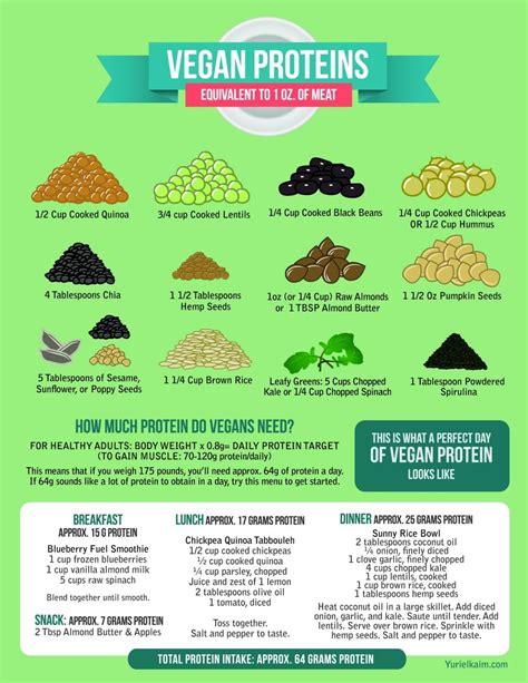 Best Detox Weight Loss Vegan Shake by Best 25 Best Vegan Protein Powder Ideas On