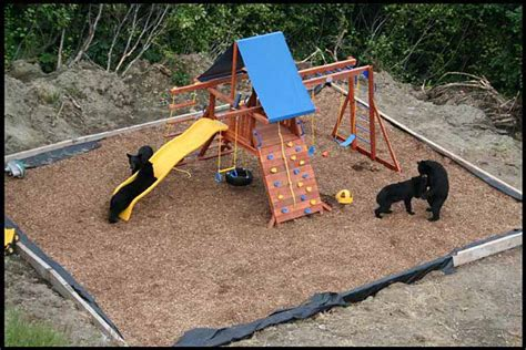 Alaskan Playground
