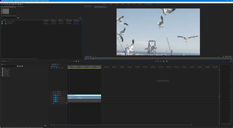 adobe premiere pro youtube 1080p how to export hd video in premiere pro cc for youtube and