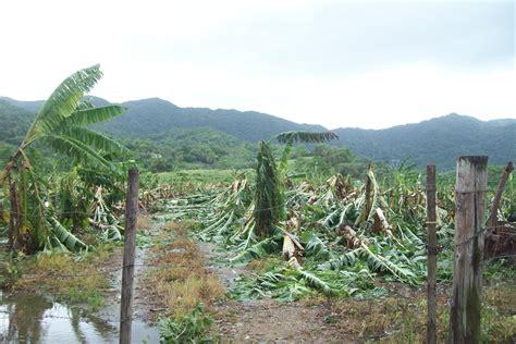 EDB gives farmers battered by Irene 3 month break on loan