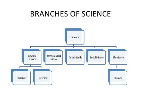 branches of science flowchart different divisions of science