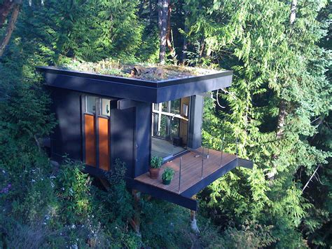 forest edge office tiny house swoon