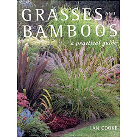 Grasses And Bamboos A Practical Guide Book Isbn 10