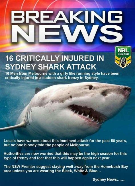 Cronulla Sharks Memes - cronulla sharks memes 14 best images about footy on